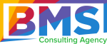 BMS Consulting Agency